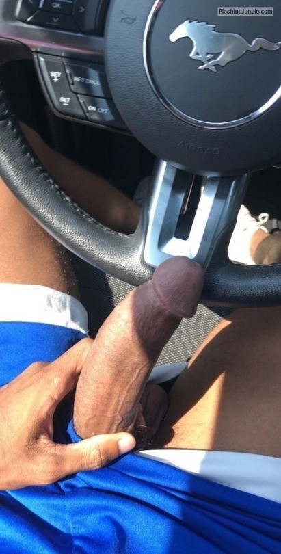 coolroseus: public flashing dick flash