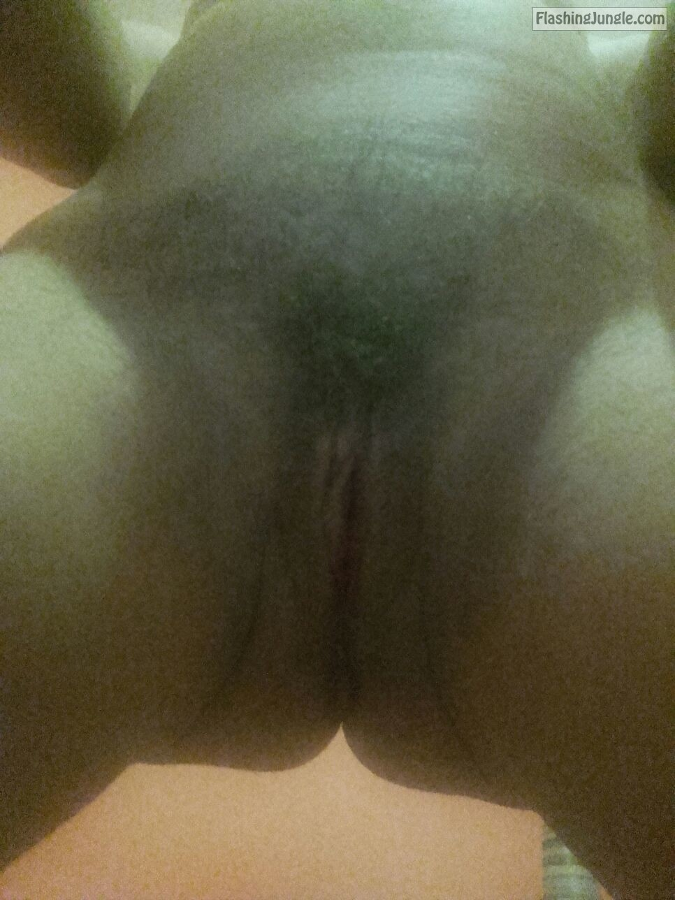 Beautiful hairy cunt of my sis real nudity pussy flash no panties