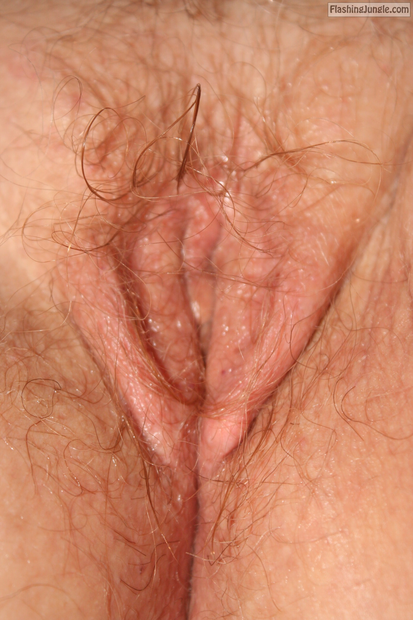 Wet hairy close up pic for pussy lovers real nudity